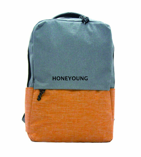 2020 Two Tone 300D Mixed Color Backpack HYA-1609